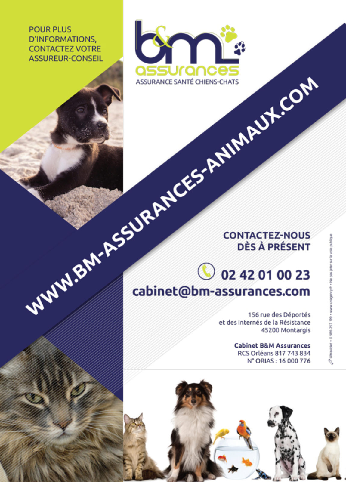 BM_Animaux_Flyer_A5_HD-2